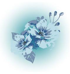 elegance light blue flowers white vector image