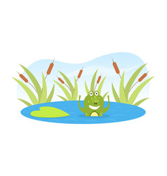 green funny frog swimming in pond cute amphibian vector image
