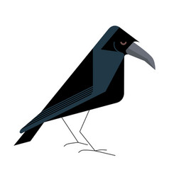 Old wise raven vector