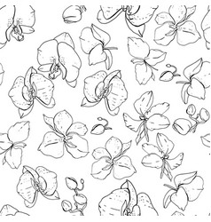 Seamless floral pattern with romantic flowers vector