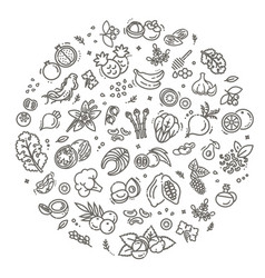 superfoods line icons organic vector image