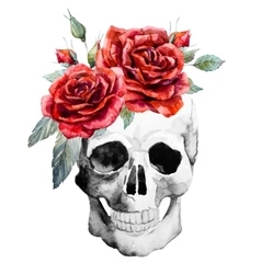 Watercolor hand drawn skull with roses vector