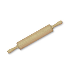 wooden rolling pin vector image