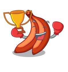 Boxing winner banana merah in the shape cartoon vector