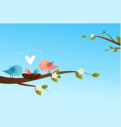 cute birds family vector image