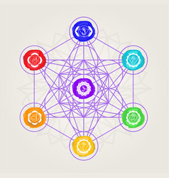 geometric metatron with chakras vector image