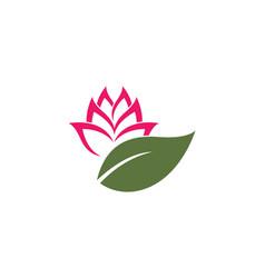 Lotus flowers design logo vector