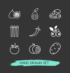set of berry icons line style symbols with vector image