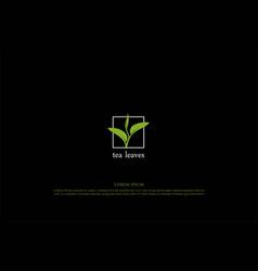 simple minimalist green tea leaf leaves bud shoot vector image