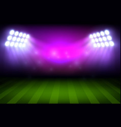 Soccer or football sport stadium field background vector
