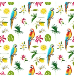 Tropical background parrot bird tropical flowers vector