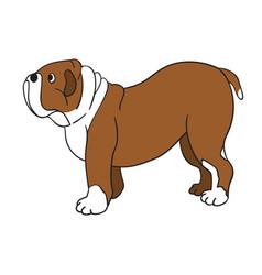 cute cartoon bulldog isolated on white background vector image