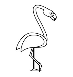 flamingo bird tropical thin line vector image