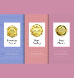 premium brand best quality choice golden label set vector image
