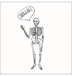 Fun smiling affably waving skeleton vector image vector image