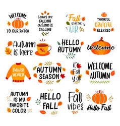 autumn hand drawn lettering set phrases vector image