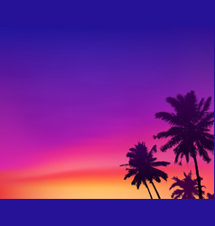 dark palm trees silhouettes on violet and pink vector image