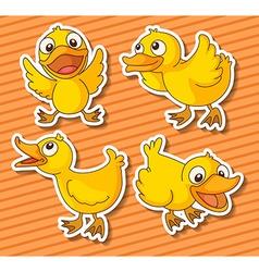 Ducklings vector