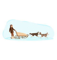 eskimo man riding in a sledge pulled dogs vector image