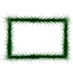 frame of colorful coniferous branches vector image