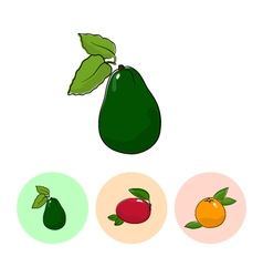 Fruit icons avocado mango grapefruit vector