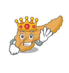 King pancreas mascot cartoon style vector