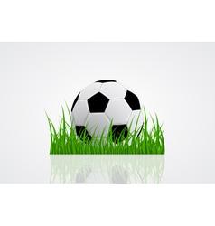 ball on grass 2 vector image