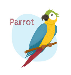cute macaw ara parrot sitting on branch vector image