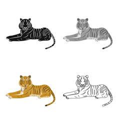 tiger a predatory animal the belgian tiger a vector image vector image