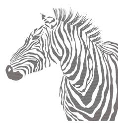 Animal of black zebra striped vector