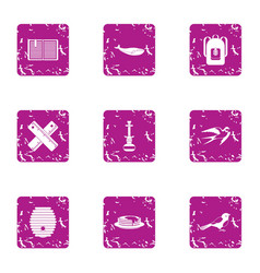 Animal watching icons set grunge style vector