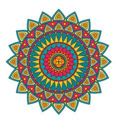 Color floral mandala vector