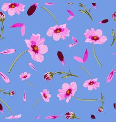 cosmos flowers onturquoise-flowers in bloom vector image