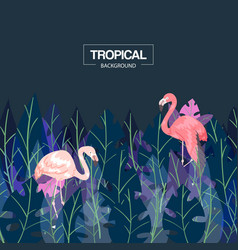tropical background banner vector image