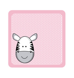 colorful greeting card with picture zebra animal vector image