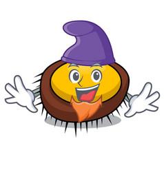 Elf sea urchin character cartoon vector