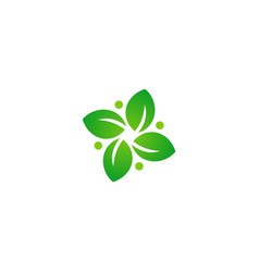 green leaf circle botany logo vector image