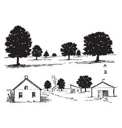 Landscape perspective agricultural landscapes vector