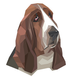Portrait of basset-hound in a geometric style vector
