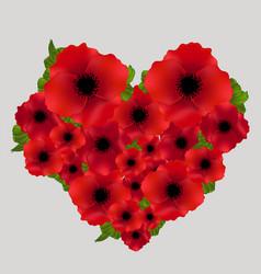 Red poppy flowers heart love memorial remembrance vector