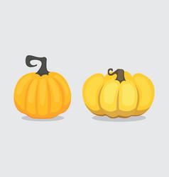set cartoon pumpkin isolated autumn vector image