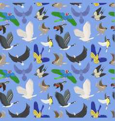 set of different wing wild flying birds seamless vector image