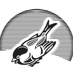 Sparrow vector
