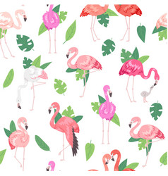 tropical flamingo seamless pattern summer time vector image