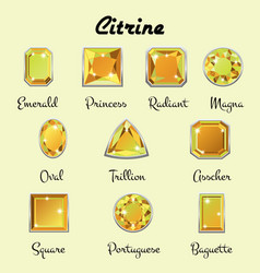 types of cuts of citrine vector image