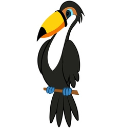 Funny Cartoon Toucan vector image vector image