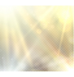 transparent sunlight flare light effect vector image vector image