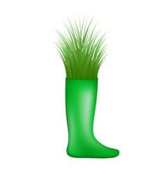 grass growing from green rubber boot vector image