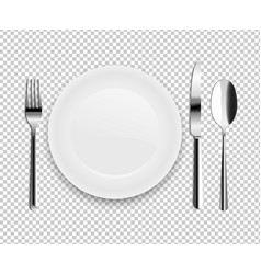plate with spoon vector image vector image
