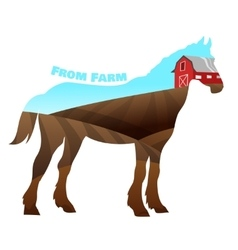 concept horse silhouette with text on farm vector image